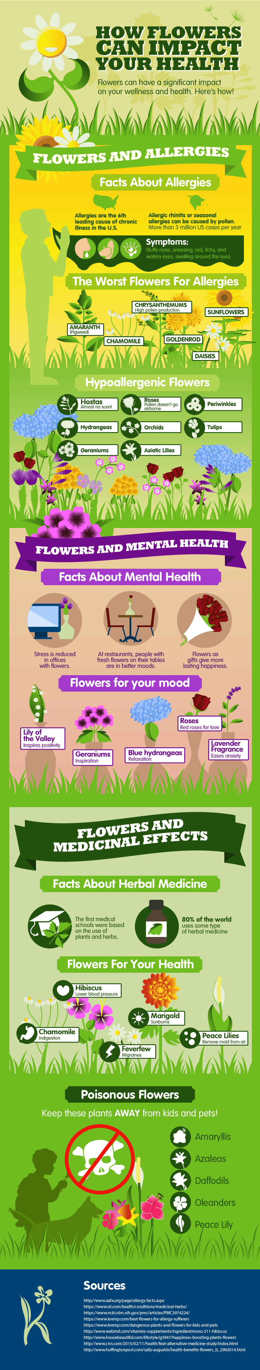 Infographic: How Flowers can Impact your Health